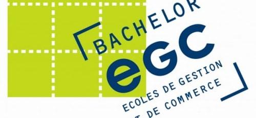 Plus de 150 points au TOEIC ? L'EGC Martinique témoigne.